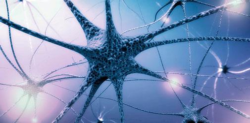 Часть нейронов переходит в неактивное состояние - Алкоклиник
