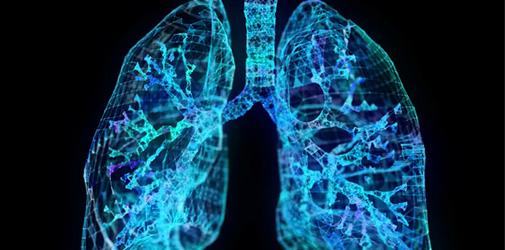 Вентиляция и газообмен в легких - Алкоклиник